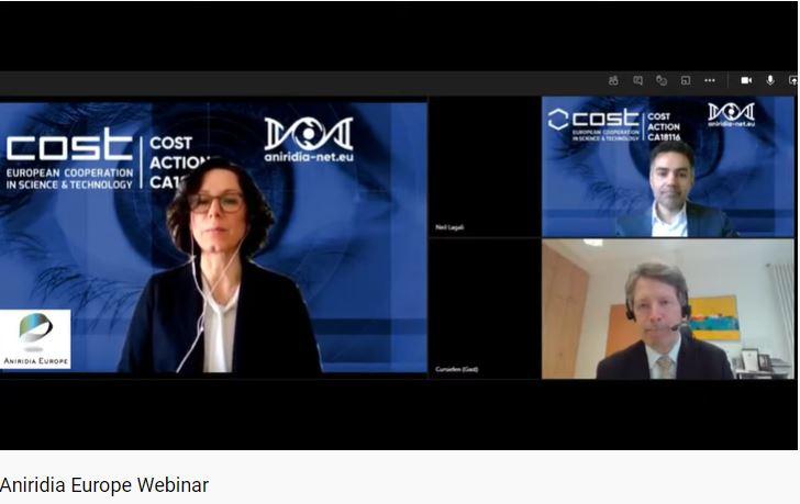 Captura de pantalla webinar. Pantalla a tres con Neil Lagali,Claus Cursiefen e Ivana Kildsgaard